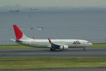 2008年5月19日JAL737-800 001トリ.jpg