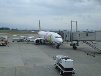 2008年鹿児島旅行羽田にて携帯写真 042.jpg