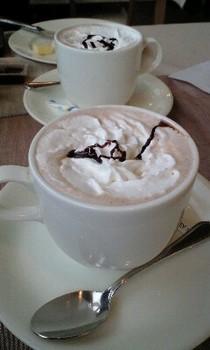 CAFPEXVI.jpg